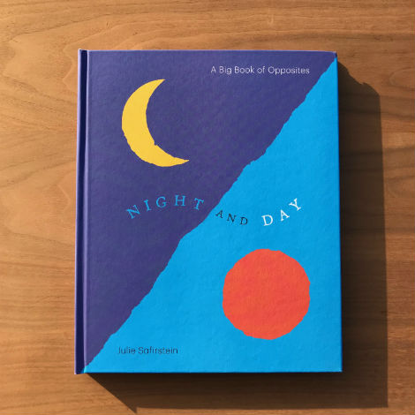 Night and Day - Julie Safirstein